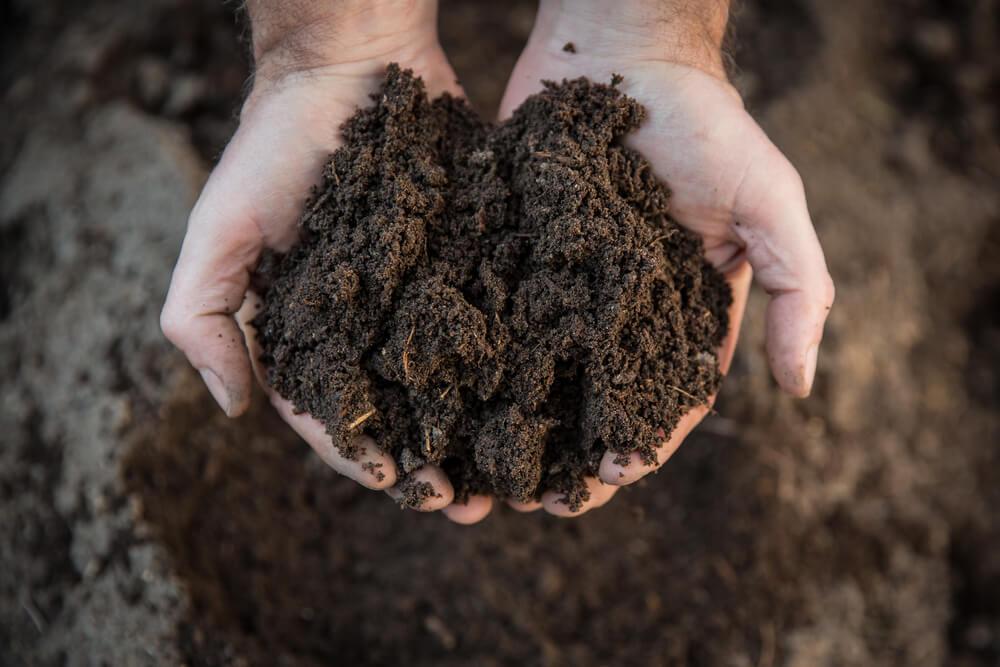 Cara Mudah Membuat Kompos dari Sampah Rumah Tangga