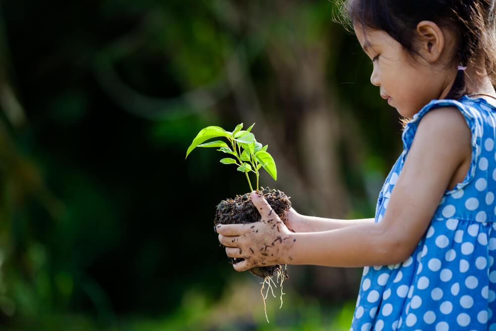 Tumbuhkan Cinta Lingkungan Lewat Berkebun