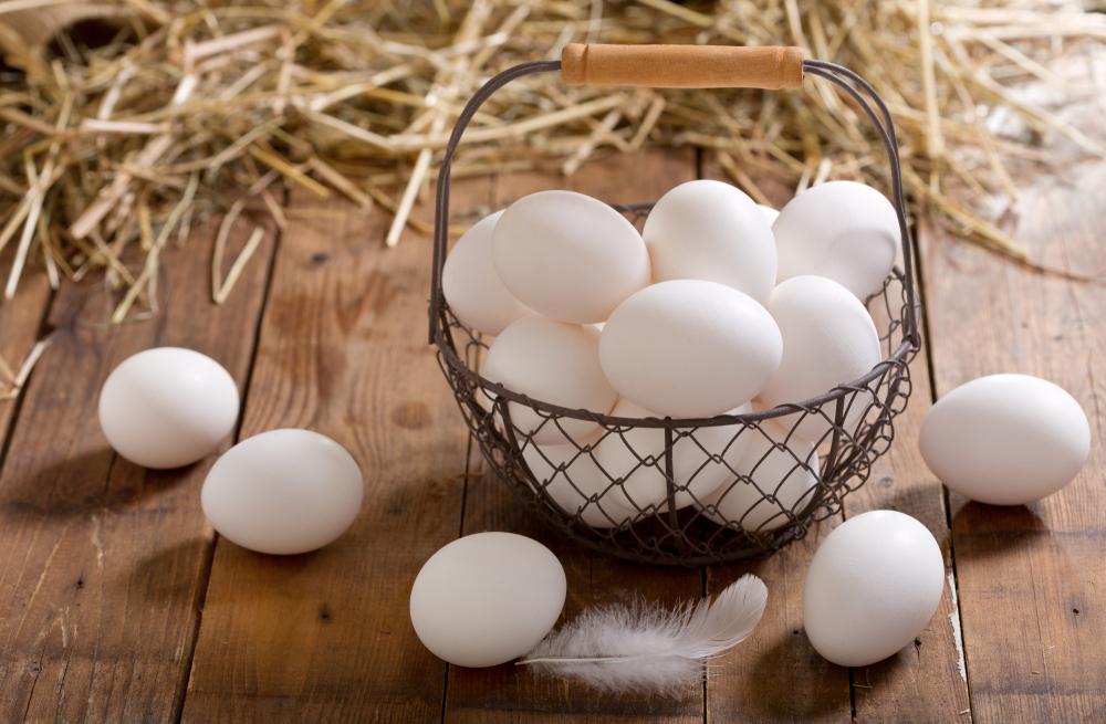 Manfaat Telur Ayam Kampung Bagi Keluarga