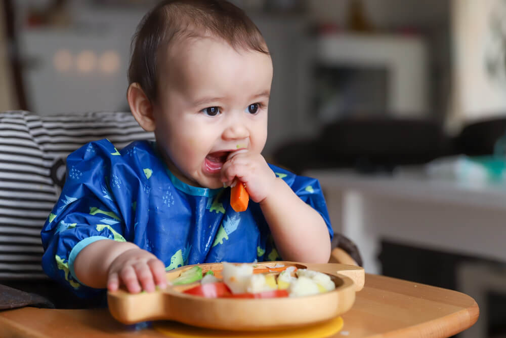 Waktu dan Cara Aman Baby-Led Weaning