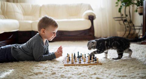 Manfaat Hewan Peliharaan untuk Anak