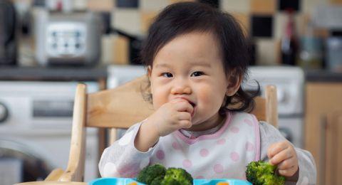 Resep Finger Food untuk Bayi
