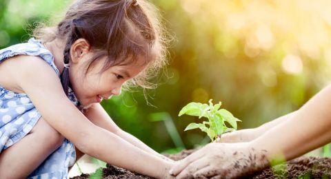 Peran Lingkungan pada Perkembangan Anak